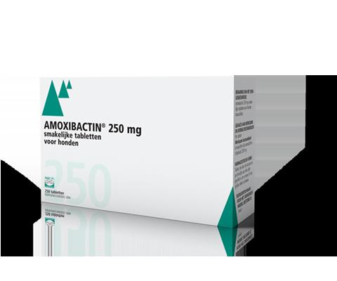 Amoxicilline 250 mg bijsluiter nolvadex